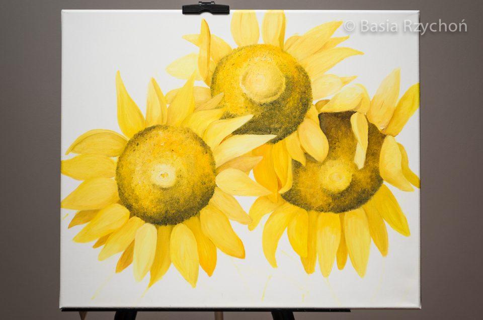 3. Płatki o pięknym żółtym kolorze pojawiają się już przy wszystkich kwiatach.